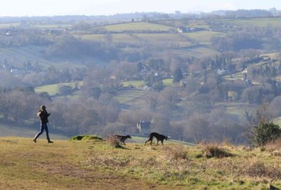 Fantastic walking country for families, groups and canine friends