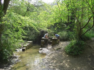 Go paddling in the stream in Chalford Park